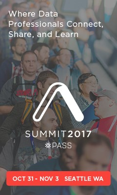 PASS_17_Summit_Banners_240x400-A